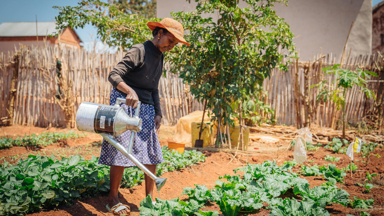 Marie, waters her vegetable garden near her home in the Bongolava, Madagascar.
